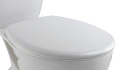 Крышка-сиденье Jacob Delafon Brive (E70014-00) микролифт