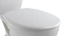 Крышка-сиденье Jacob Delafon Brive (E4357G-00)