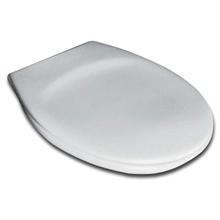 Крышка-сиденье Ideal Standard Eurovit W303001 микролифт