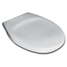 Крышка-сиденье Ideal Standard Eurovit W302601